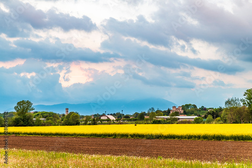 Cadres-photo bureau Jaune Yellow fields of rape on the hills of Friuli. Cassacco and its castle