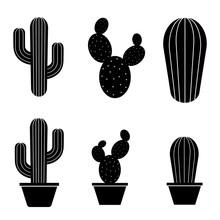 Cactus Icon, Logo Isolated On ...