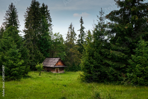 Canvas Print Old log cabin in the forest..