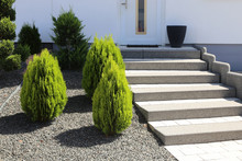 Neat And Tidy Front Yard With ...