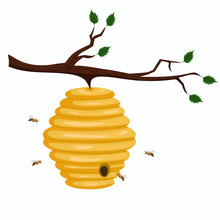 Beehive Of Wild Bees Hanging On A Branch. Vector Graphics Isolated On White Background.