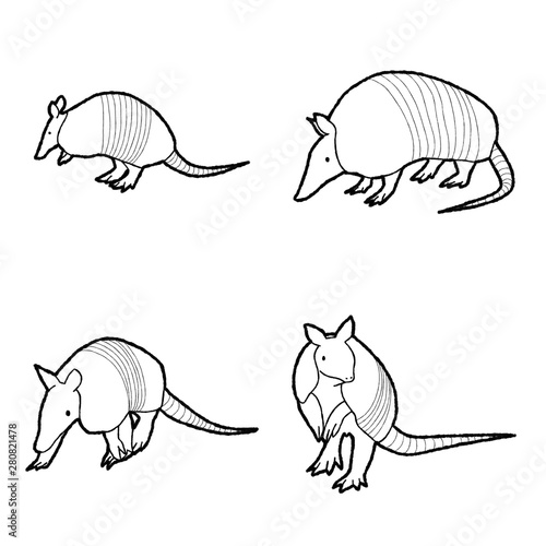Photo Armadillo Animal Vector Illustration Hand Drawn Cartoon Art