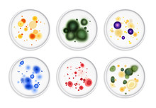 Moldiness Bacteria Colonies Set