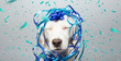 canvas print picture - Dog banner party. Puppy celebrating birthday, anniversary, carnival or new year with a blue ribbon on head and serpentine and closed eyes. Isolated on gray background.