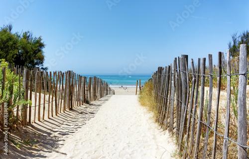 Foto op Canvas Strand Conche des baleine beach inÎle de Ré