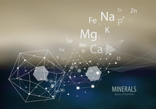 Minerals / The Future Is Scien...