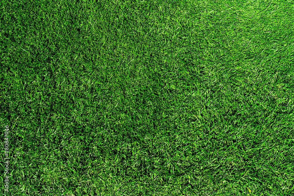Fototapeta directly above shot of fresh green grass or lawn