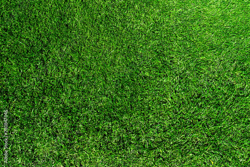 Tuinposter Gras directly above shot of fresh green grass or lawn
