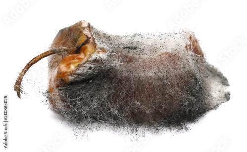 Valokuva  Moldy apple isolated on white background, clipping path