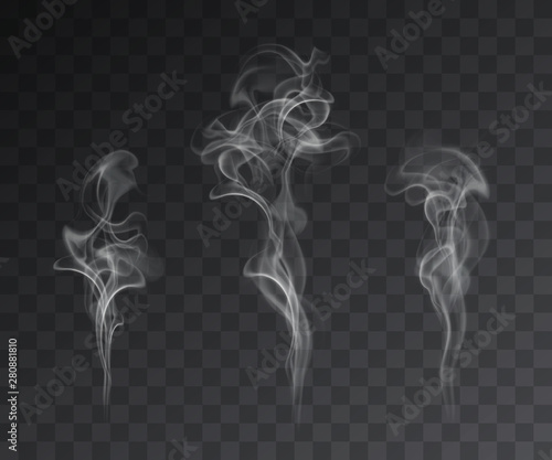 Fotografie, Obraz Vector set of realistic smoke effects on dark background