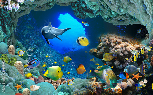 Obraz 3d illustration wallpaper under sea dolphin, Fish, Tortoise, Coral reefsand water with broken wall bricks background. will visually expand the space in a small room, bring more light and become an ac - fototapety do salonu