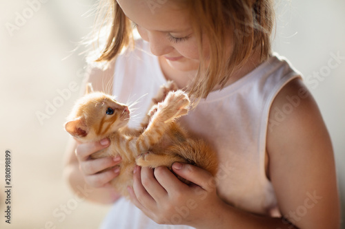 Little girl holding baby cat. Kids and pets - 280898899