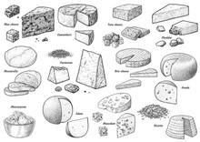 Cheese Colelction, Illustration, Drawing, Engraving, Ink, Line Art, Vector