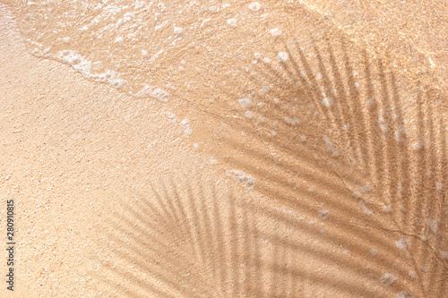 Fotografia, Obraz Selective focus of summer and holiday backgrounds concepts with shadow of coconu