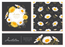 Flowers Cards Set Chamomile Background Daisy Wreath. Flowers And Leaves Of Daisies On A Dark Background. Vector Floral Invitations With Text Space