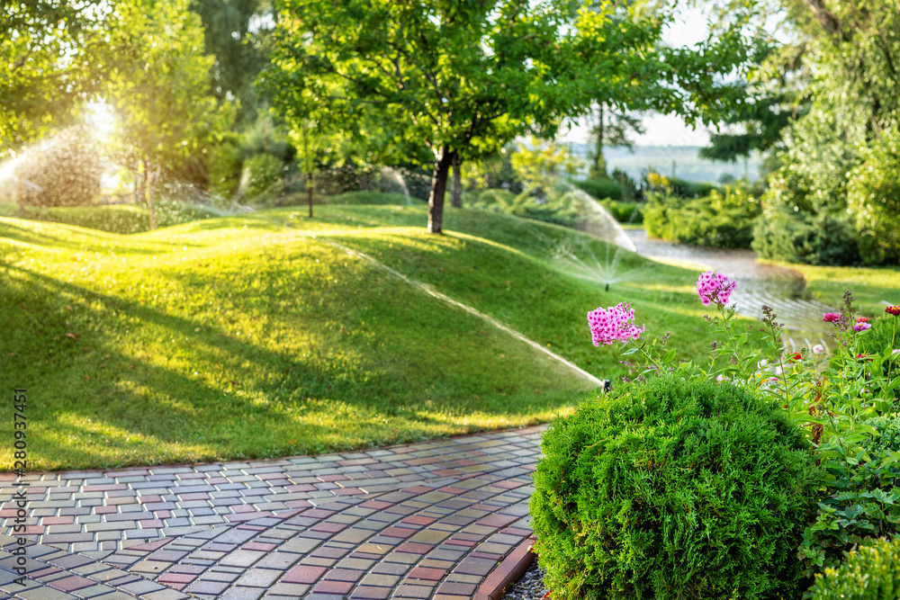 Fototapety, obrazy: Automatic garden watering system with different sprinklers installed under turf. Landscape design with lawn hills and fruit garden irrigated with smart autonomous sprayers at sunset evening time