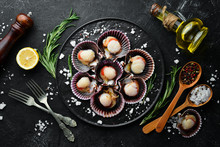 Fresh Scallops With Spices. Se...