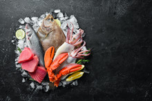 Fresh Seafood And Fish On Black Stone Background. Flounder, Lobster, Squid, Tuna, Fish. Top View. Free Copy Space.