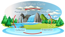Water Cycle Process On Earth -...