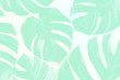 Tropical background. Tropical palm leaves on pastel yellow and blue background. Flat lay, top view