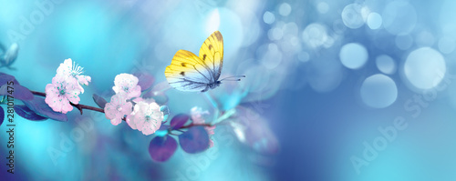 Foto auf AluDibond Blumen Beautiful blue yellow butterfly in flight and branch of flowering apricot tree in spring at Sunrise on light blue and violet background macro. Elegant artistic image nature. Banner format, copy space.