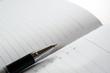 Management concept, pen over an agenda