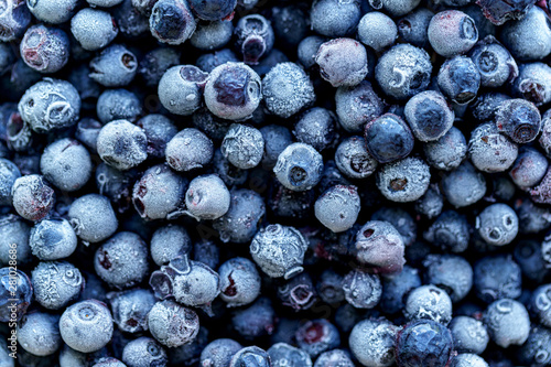 Fototapety, obrazy: Frozen blueberries texture. Frozen berries background close-up