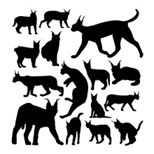 Wild Caracal Cat Animal Silhouettes. Good Use For Symbol, Logo,  Web Icon, Mascot, Sign, Or Any Design You Want.