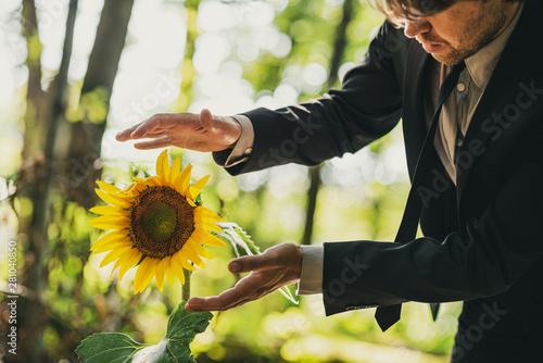 Fotografie, Obraz  Man in business suit holding his hands around sunflower