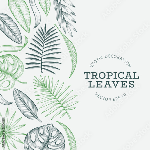 Tropical plants banner design. Hand drawn tropical summer exotic leaves illustration. Jungle leaves, palm leaves engraved style. Vintage background design Wall mural