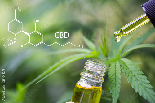 mata magnetyczna CBD elements in Cannabis, Hemp oil, medical marijuana, cannabinoids and health.