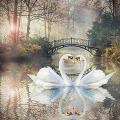 Scenic view of swan love in autumn landscape with beautiful old bridge in foggy garden.