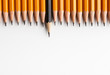 Row of classic yellow pencils with one black protruding
