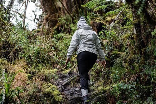 Mujer en caminata en el Páramo Nacional de Chingaza, Cundinamarca y Boyacá-Colom Canvas Print