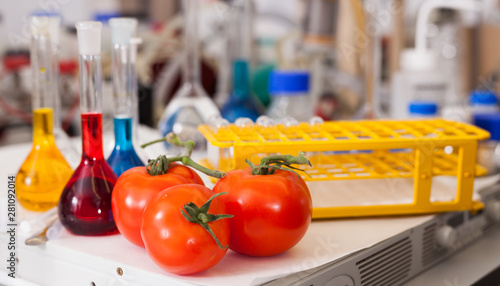 Foto auf AluDibond Amsterdam Tomatoes with lab tools