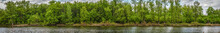 Panorama Of The Lake With A Fo...