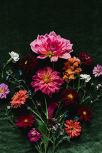 Bouquet Of Late Summer Flowers On A Green Velvet Background