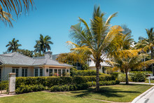 Typical American House With Green Grass And Palm Trees In A Sun Rays