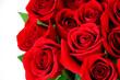 Leinwandbild Motiv fresh red roses in a bouquet as background