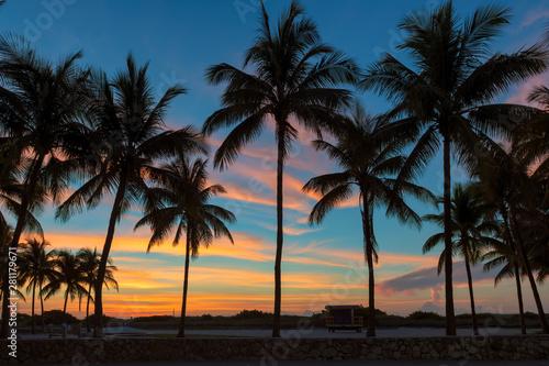 Palm trees on Miami Beach at sunrise in Ocean Drive, South Beach, Florida