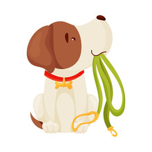 Cute Puppy Holding A Leash. Vector Illustration On White Background.