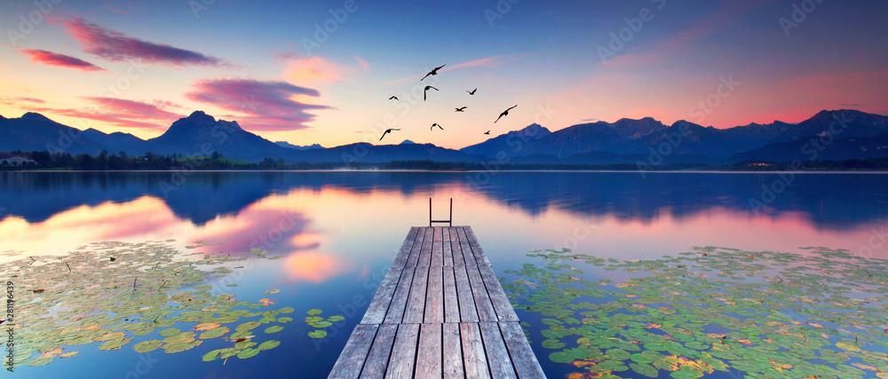Fototapeta Seerosen am Alpensee