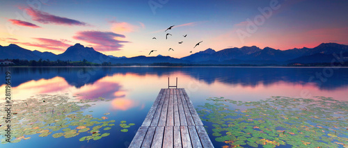 Tuinposter Waterlelies Seerosen am Alpensee