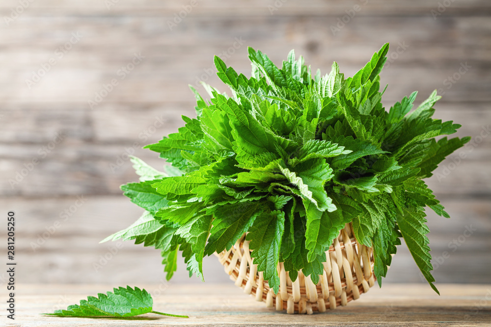 Fototapeta Young nettle leaves in basket on wooden rustic background, stinging nettles, urtica.