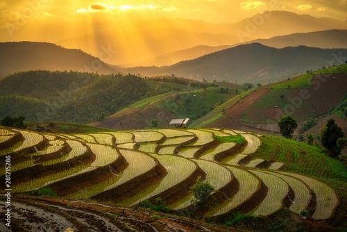 Fotobehang Rijstvelden rice terrace during sunset in Chiang Mai, Thailand