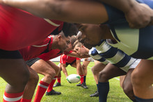 Male Rugby Players Ready To Pl...
