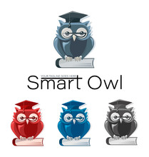 SMART OWL. Education Icon, Logo. Set. Owl In Glasses And A Graduate Hat On The Book In Four Color Combinations.