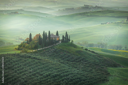 Foto auf Leinwand Olivgrun Fantastic sunny spring field in Italy, tuscany landscape morning foggy famous Cypress trees