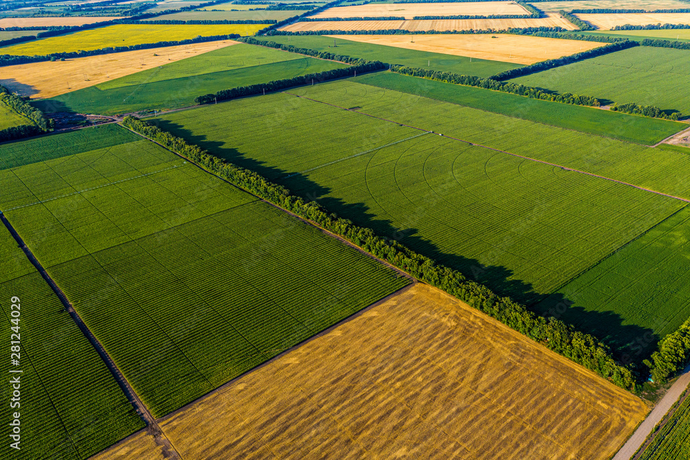 Fototapeta Aerial Flying Over corn, sunflowers, soybean and fields with straw bales