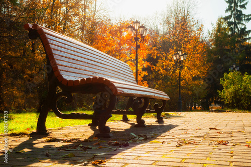 Fototapeta Autumn October Landscape Bench At The Autumn Park Under Colorful Deciduous Trees Lit By Bright Sunlight